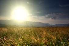 Free Summer Landscape Field Royalty Free Stock Image - 18056276