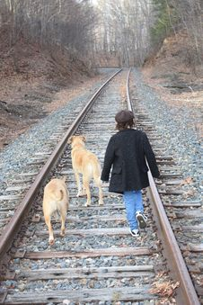 Child And Dogs On Train Tracks Royalty Free Stock Photo