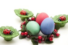 Free Colored Eggs In The Wreath Stock Photography - 18062162