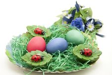 Free East Ernest With Colored Eggs Royalty Free Stock Photo - 18062165