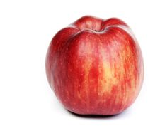 Free Red Ripe Apple Stock Images - 18062664