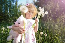 Free Little Girl With Dandelions. Royalty Free Stock Photos - 18062668