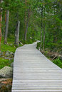 Free Wooden Path To The End Royalty Free Stock Photography - 18077977