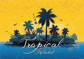 Free Tropical Background Stock Image - 18079671