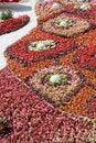 Free Flower Design Royalty Free Stock Image - 18079736