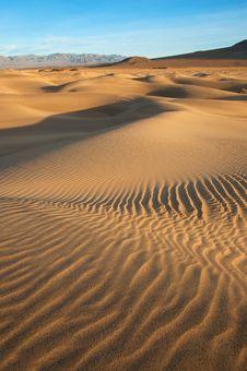 Free Mesquite Dunes Stock Image - 18070031