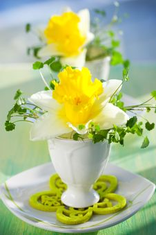 Free Narcissus In Eggcups Royalty Free Stock Photos - 18070498