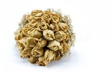 Dried Roses Bouquet Isolated Royalty Free Stock Photo