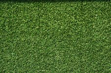 Free Artificial Grass Royalty Free Stock Images - 18071729