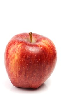 One Red Apple Royalty Free Stock Photo