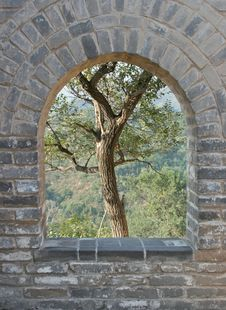 Free Tree In Archway Great Wall Royalty Free Stock Images - 18074029