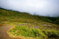 Free Rice Terraces Royalty Free Stock Image - 18074656