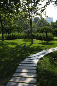 Free Summer Garden Stock Photos - 18074803