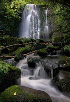 Matai Falls Royalty Free Stock Image