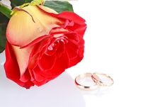 Free Two Wedding Rings With A Rose As Wedding Concept Stock Photos - 18076003