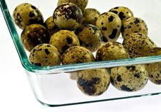 Free Quail Eggs Royalty Free Stock Image - 18076416