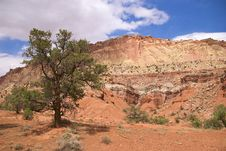 Free Capitol Reef National Park Royalty Free Stock Image - 18076446