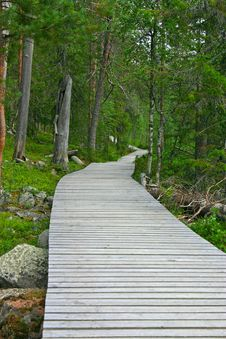 Wooden Path To The End