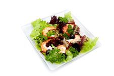 Free Salad With Shrimp, Black Olives And Herbs Royalty Free Stock Images - 18078059