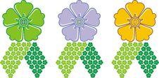 Award Flower Stock Images