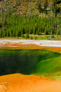 Free Emerald Pool, Yellowstone Royalty Free Stock Image - 18084026