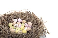 Free Colored Easter  Eggs In Bird Nest Over White Stock Image - 18080681