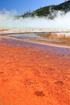 Colors Of The Grand Prismatic Spring Royalty Free Stock Image