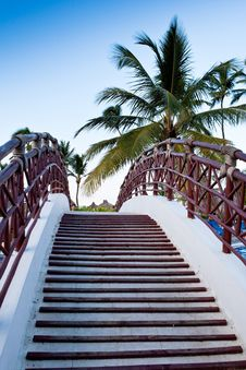 Free Staircase Of The Bridge Under Palm Blue Sky Stock Photography - 18085262