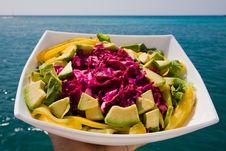 Free Salad Stock Photography - 18085582