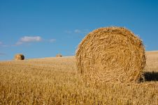 Free Bales Of Straw Royalty Free Stock Images - 18086329