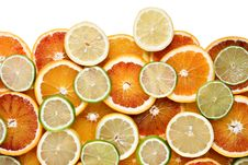 Free Slices Of Orange, Lemon And Limes Stock Images - 18087194