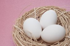 Free Eggs In A Nest Stock Image - 18089791