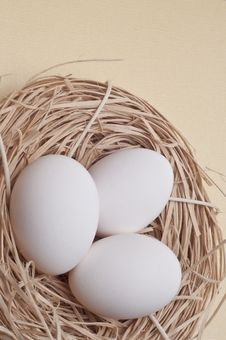 Free Eggs In A Nest Stock Images - 18089814