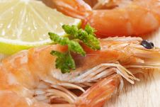 Free Shrimps With Parsley And Lemon Royalty Free Stock Image - 18089886