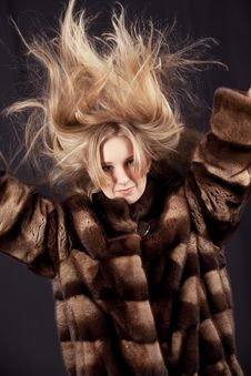 Woman In Fur Jacket Stock Images