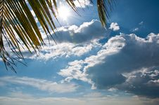 Free Clear Sky Royalty Free Stock Photo - 18095245