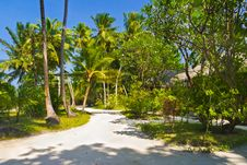 Free Bungalows On Beach And Sand Pathway Royalty Free Stock Image - 18095436