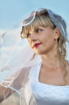 Free Beautiful  Young Woman Bride Portrait Royalty Free Stock Image - 18099826