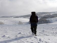 Walking In The Snows Stock Photography
