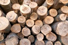 Free Pile Of Wood Stock Photos - 1816883