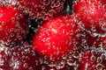 Free Cherry Effervescent Royalty Free Stock Photo - 18106085
