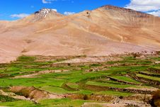 Free Dry Mountain And Green Paddy Royalty Free Stock Images - 18100309
