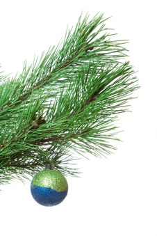 Free Fir-twig With Christmas Ball Royalty Free Stock Photography - 18100457