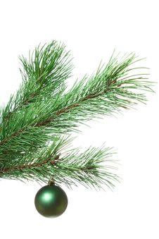 Free Fir-twig With Christmas Ball Stock Photo - 18100490