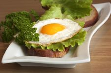Free Sandwich With A Fried Egg And Greens Stock Images - 18100814