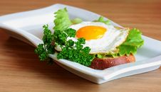Free Sandwich With A Fried Egg On A White Plate Royalty Free Stock Images - 18100829