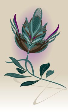 Free Tulip Stock Image - 18103151