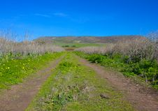 Grassy-Road-to-Mountain Royalty Free Stock Photography