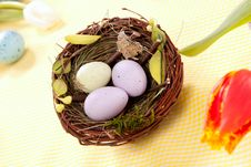Easter Eggs In Birds Nest Royalty Free Stock Images