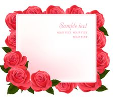 Free Beautiful Red Roses, Royalty Free Stock Images - 18107519